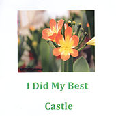 I Did My Best by Castle