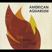Burn. Flicker. Die. by American Aquarium