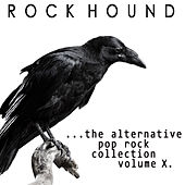 Rock Hound: Alternative Pop Rock, Vol. 10 by Various Artists