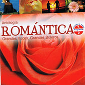 Antología Romántica Grandes Voces, Grandes Boleros, Vol. 2 by Various Artists