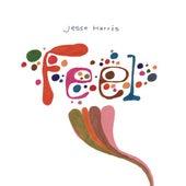 Feel by Jesse Harris