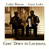 Goin' Down To Louisiana by Cedric Watson