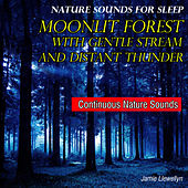 Nature Sounds for Sleep: Moonlit Forest with Gentle Stream and Distant Thunder by Jamie Llewellyn