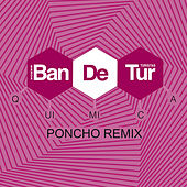 Química (Poncho Remix) - Single by Banda de Turistas