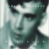 Qualquer by Arnaldo Antunes