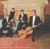 Quartetti per Oboe, Violino, Viola, Violoncello by Ama Deus Ensemble