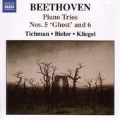 Beethoven, L. Van: Piano Trios, Vol. 1 - Piano Trios Nos. 5, 6, 10 by Xyrion Trio