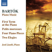 Bartók: Piano Music, Vol. 6 by Jeno Jando