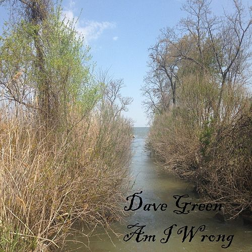 Am I Wrong by Dave Green
