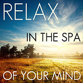 Relax in the Spa of Your Mind: 50 Relaxing Nature Songs for Meditation, Yoga, Spa, Massage, & New Age Healing by Nature Sounds Nature Music