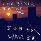Son of Walter by The Bevis Frond
