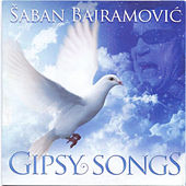 Gipsi songs - Instumental by Saban Bajramovic
