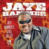 Jaye Hammer's Still Got It by Jaye Hammer