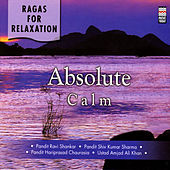 Ragas For Relaxation - Absolute Calm by Various Artists