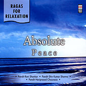 Ragas For Relaxation - Absolute Peace by Various Artists