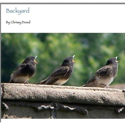 Backyard by Chrissy Dowd