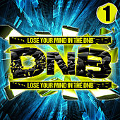 D'n'b, Vol. 1 von Various Artists