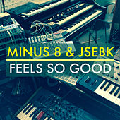Feels so Good (Remixes) by Minus 8