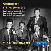 Schubert: String Quartets by Busch Quartet