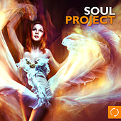 Soul Project by Various Artists