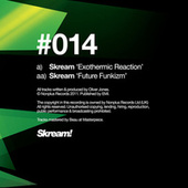 Exothermic Reaction by Skream