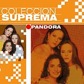 Coleccion Suprema by Pandora
