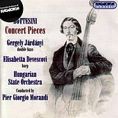 Bottesini: Works for Double Bass, Vol. 1 - Concert Pieces by Gergely Jardanyi