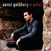 Unfolding by Aaron Goldberg