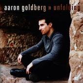 Unfolding by Aaron Goldberg