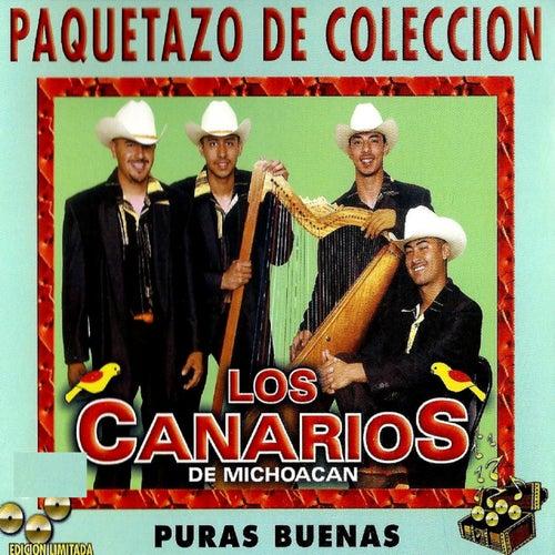 Paquetazo 30 De Coleccion - Puras Buenas by Los Canarios De Michoacán