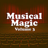 Musical Magic Vol 3 by Various Artists