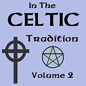 In The Celtic Tradition Vol 2 by Various Artists