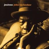 Jealous by John Lee Hooker
