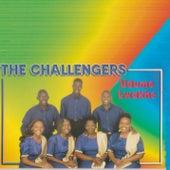Udumo Lwakhe by The Challengers
