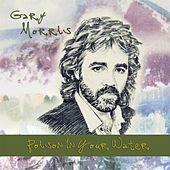 Poison in Your Water by Gary Morris