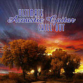 Ultimate Acoustic Chillout by Peter Wiltschinsky