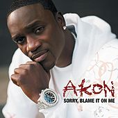 Sorry, Blame It On Me by Akon