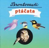 Ptacata by Brontosauri