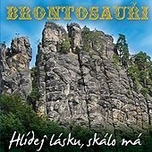 Hlidej lasku skalo ma by Various Artists