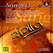 Sangeet Vol 1 - Gheli Vaant Aavi Re by Various Artists