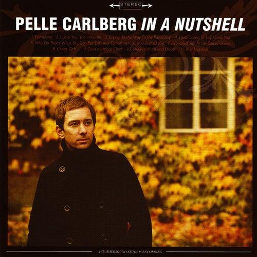 In a Nutshell by Pelle Carlberg