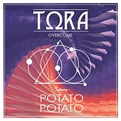 Overcome (feat. Potato Potato) by Tora
