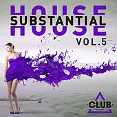 Substantial House, Vol. 5 by Various Artists