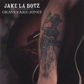 Graveyard Jones by Jake La Botz