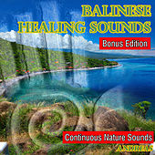 Balinese Healing Sounds by Andreas