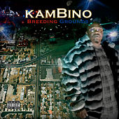 Breeding Grounds by Kambino