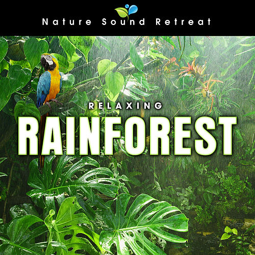 Relaxing Rainforest for Meditation & Relaxation by Nature Sound Retreat