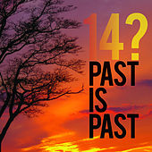 Past Is Past (Reissue) by 14