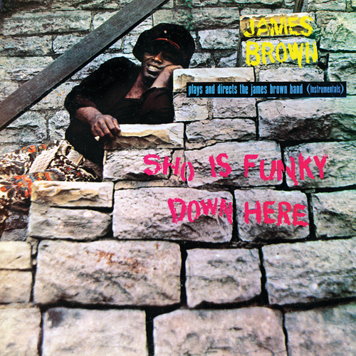 Sho Is Funky Down Here by James Brown
