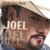 Upside Down World by Joel